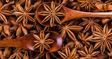 The Secret of the Star: Star Anise