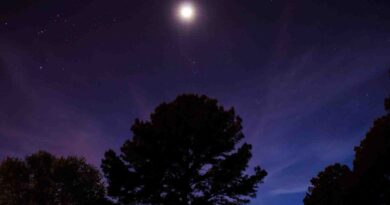 Conjunction of the Moon and the star Spica - Dorian's Secrets
