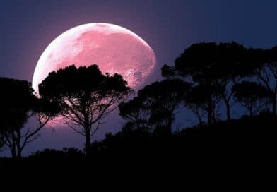 Astronomical Calendar April 2021 Rose Moon - Dorian's Secrets - The Eternal Youth Magazine!
