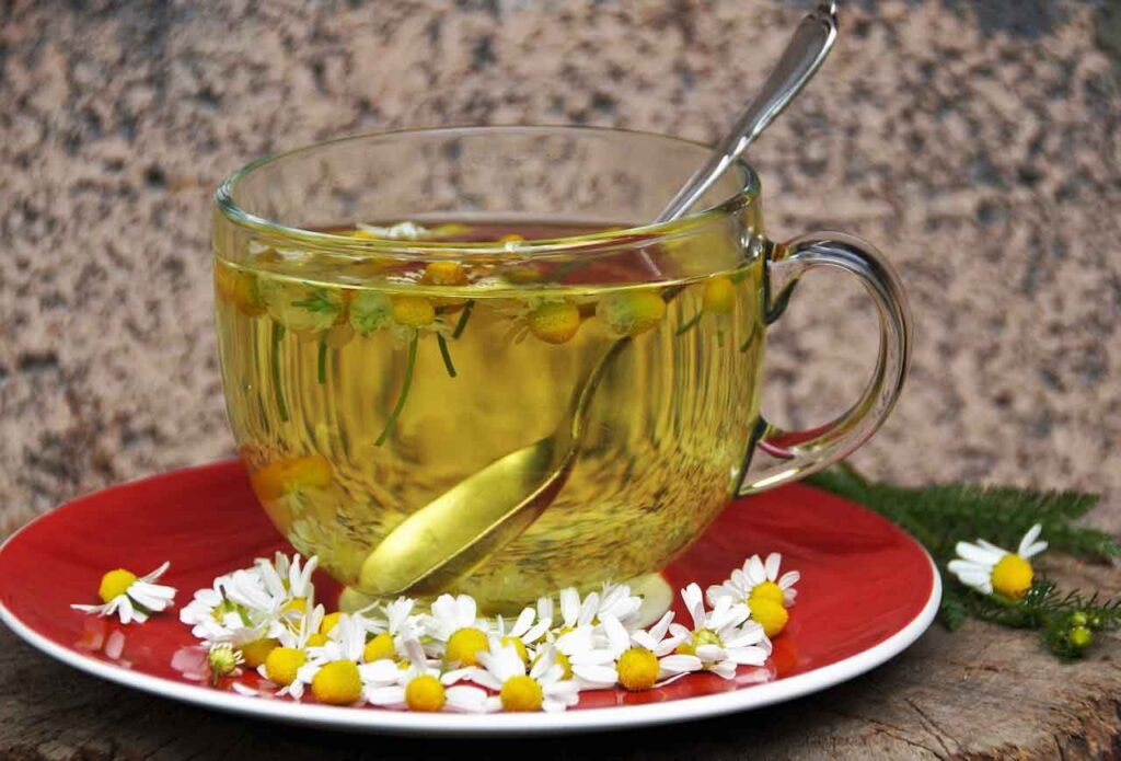 Chamomile Teacup - 7 Secrets on NO DIET Day: celebrating International No Diet Day - Beauty and Health - Diets - Dorian's Secrets - The Eternal Youth Magazine