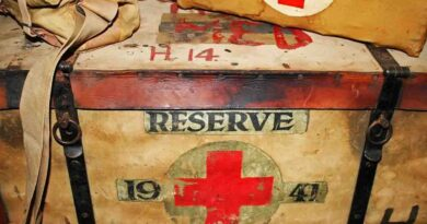 World Red Cross Day - May 8 - A Day as Today - Events and Curiosities - Dorian's Secrets: The Eternal Youth Magazine