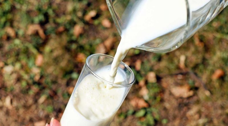 World Milk Day, by FAO - June 1 - A Day as Today - Events and Curiosities - Dorian's Secrets: The Eternal Youth Magazine