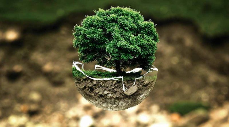 World Environment Day - June 5 - A Day as Today - Events and Curiosities - Dorian's Secrets: The Eternal Youth Magazine