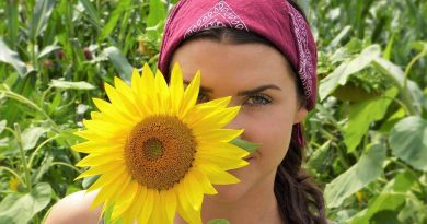 Events and Curiosities - girl, sunflower, life - July 4 - A Day as Today - Events and Curiosities - Dorian's Secrets: The Eternal Youth Magazine